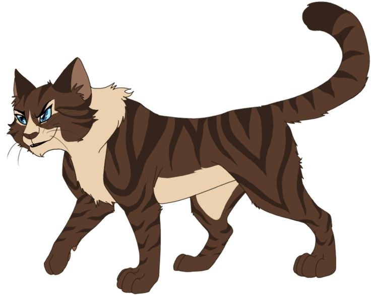 Warrior Cats Full Book Free