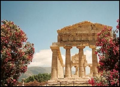 Paestum- beautiful, secluded Greek Temples near Naples