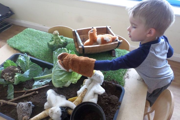 Things to do with children: Act out children's classic Beatrix Potter Book Peter Rabbit