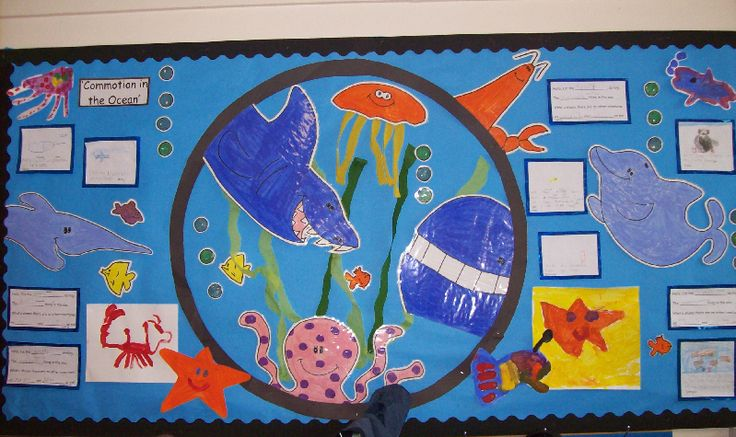 Commotion in the ocean classroom display photo - Photo gallery - SparkleBox