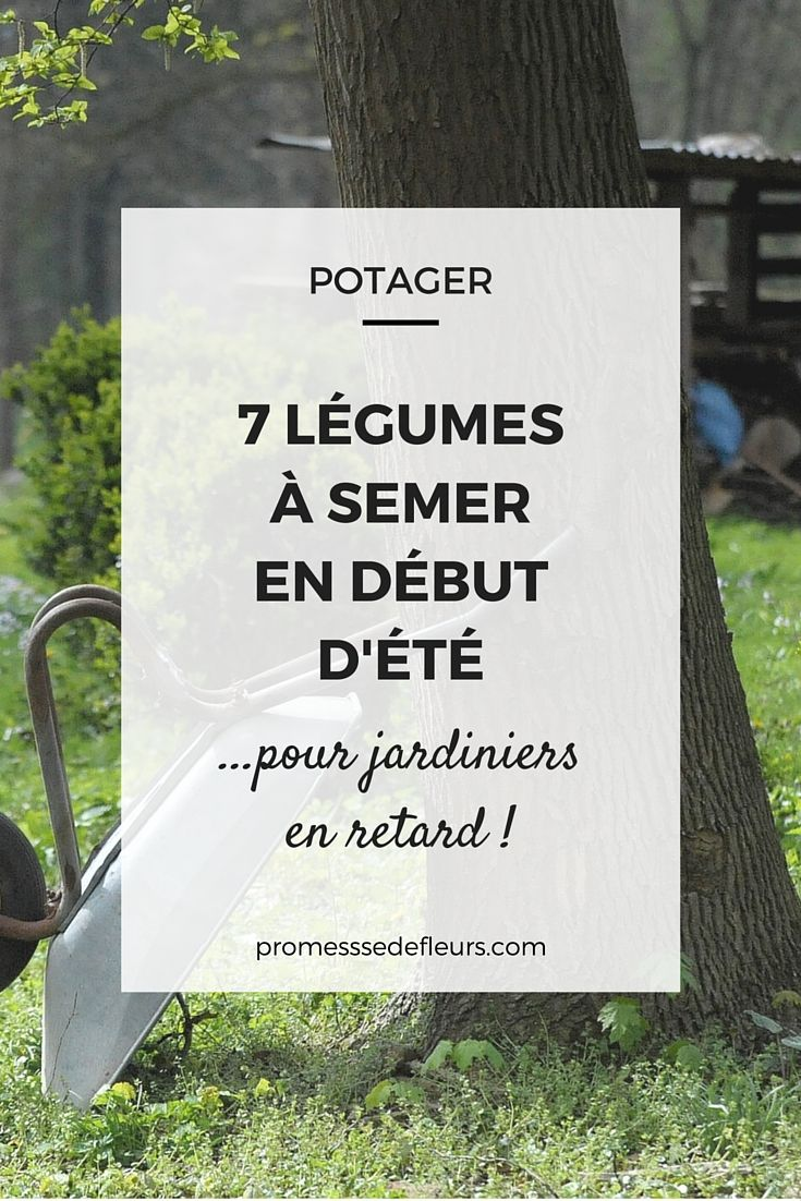 les 25 meilleures id es de la cat gorie calendrier des semis sur pinterest graine potager. Black Bedroom Furniture Sets. Home Design Ideas