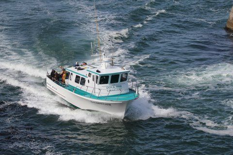 Dockside charters oregon coast fishing and whale for Charter fishing newport oregon