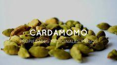 Todo lo que debes saber sobre el Cardamomo. Beneficios, usos y propiedades medicinales.