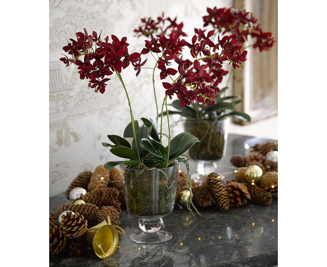 Ruby Orchid Centrepiece   Bloom Artificial Flowers Our deep red Orchid is the perfect companion to any sideboard or dining table, gorgeous all year round too!