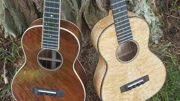 "Jayne Henderson set aside a career in environmental law to work with a renowned guitar maker: her dad, Wayne Henderson. She says each instrument they build is ""a living, breathing thing."""