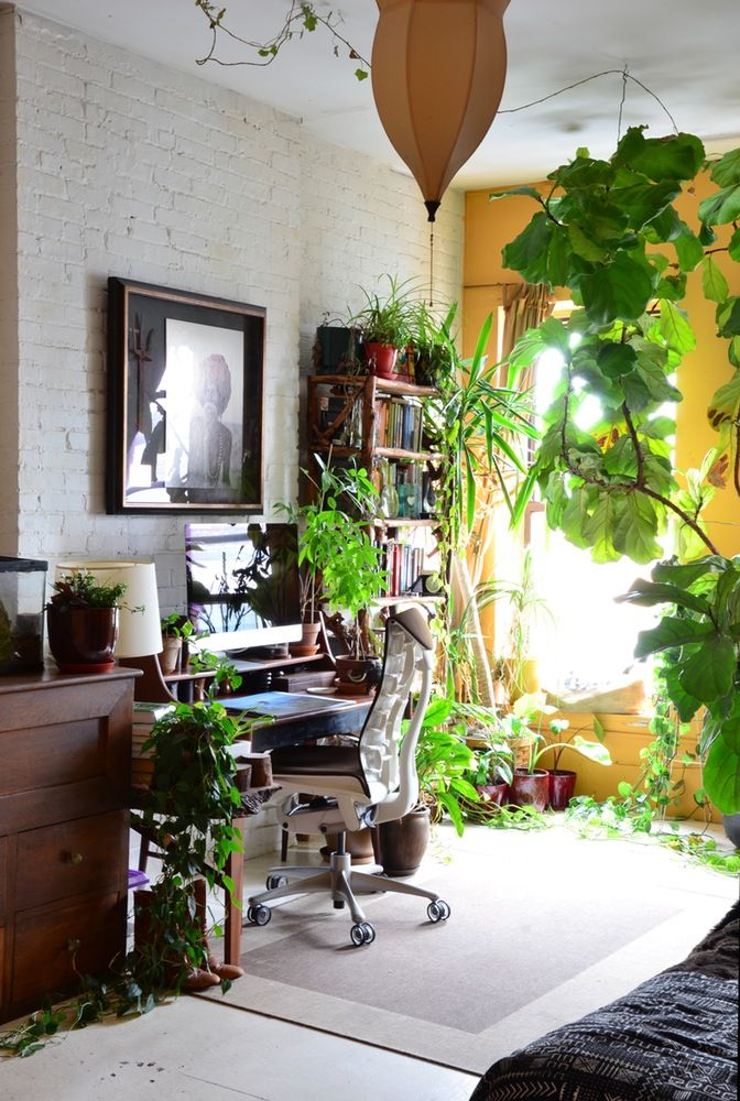 240 best Bring the Outdoors Indoors! images on Pinterest   Gardening ...