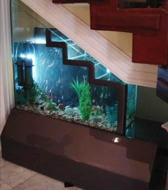 Fish tank under the stairs...neat