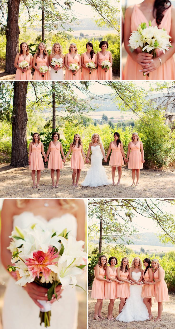 Top 25 best cornflower blue bridesmaid dresses ideas on pinterest love peach bridesmaids dresses not so much the style but the color ombrellifo Images