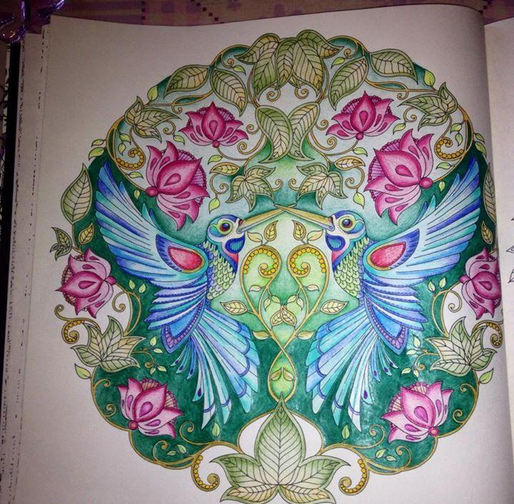 flores jardim secreto: grown-ups. Páginas inspiradoras dos livros Jardim Se…