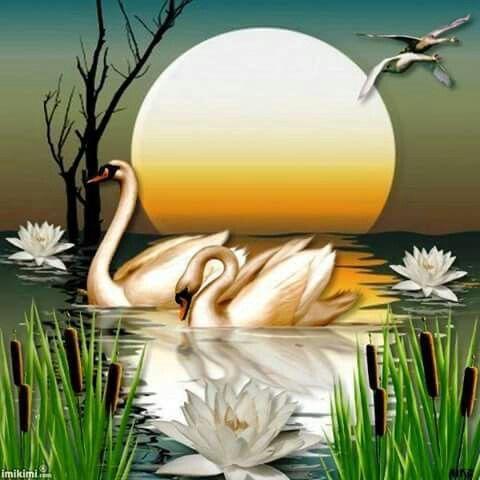 imikimicom sharing creativity pearltrees - 500×500