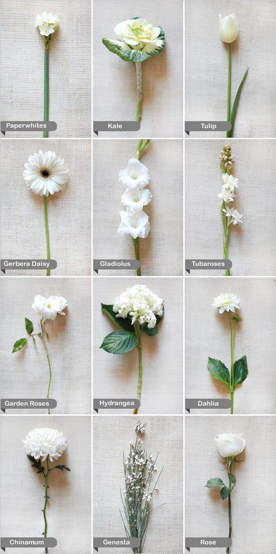 flores para boda                                                                                                                                                                                 Más