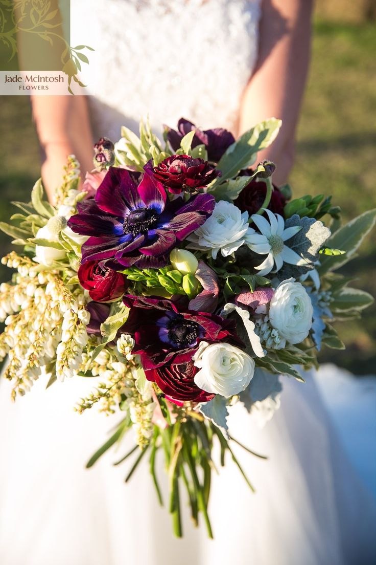 Rich burgundy anenome star in this winter bouquet, paired with burgundy and white ranunculus and pieris. Lovely. www.jademcintoshflowers.com.au www.livinglightphotography.com.au