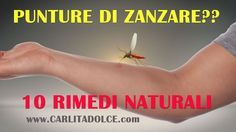 Ciao Ragazze e Ciao ragazzi!!! Finalmente potete dire Addio alle zanzare con questo Rimedio Casalingo, Facile e Veloce! Ecco a voi lo SPRAY ANTIZANZARE NATURALE, Fatto in Casa. E' efficace sia come repellente antizanzare per allontanare le zanzare sia come post-puntura lenitivo sulle punture di insetti: ZANZA STOP! :-p Lo Spray antiZanzare Naturale è semplicissimo... Mostra articolo