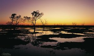 Sunset on Macquarie Marshes in NSW