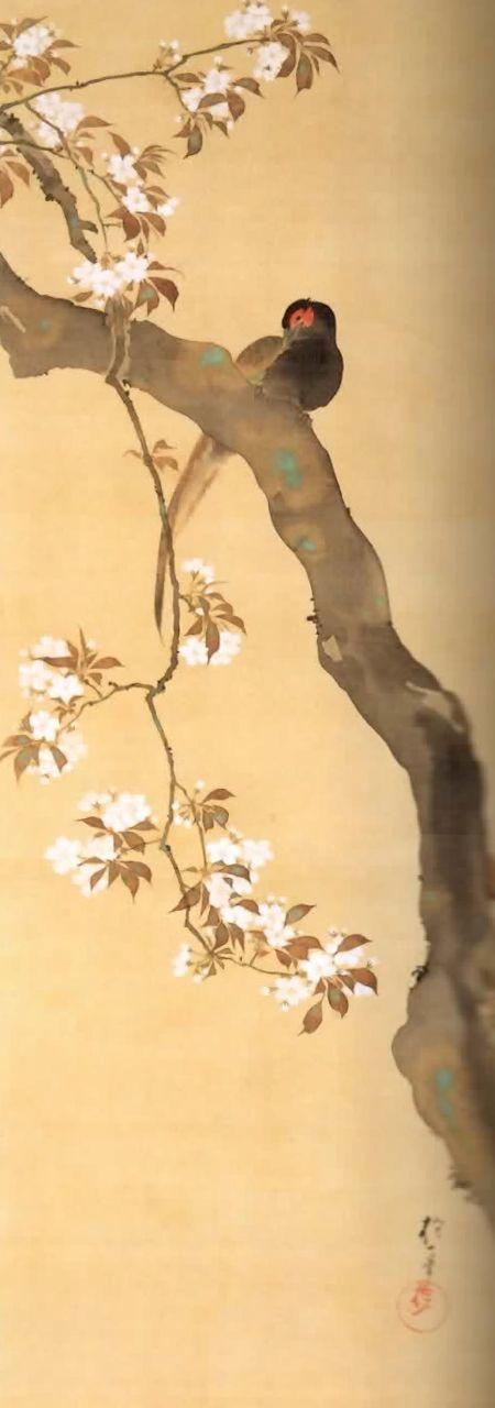 十二ヶ月花鳥図:桜に雉子図(三月),酒井抱一,19th century,Japan