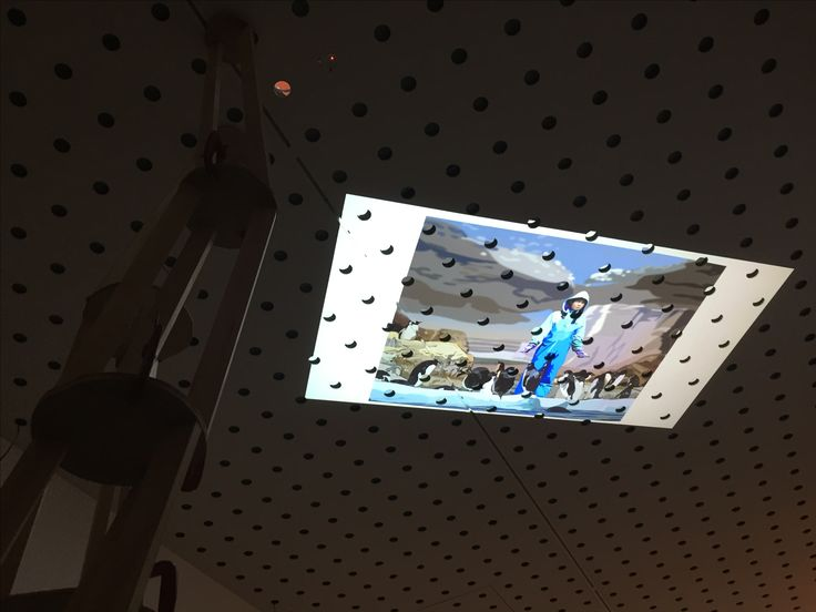 CCP gallery , image projected onto the ceiling