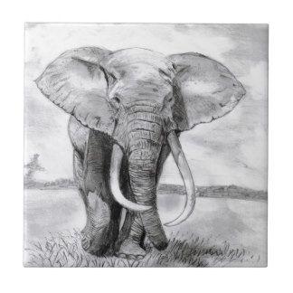 Dibujos de elefantes a lapiz buscar con google - Fotos de elefantes bebes ...