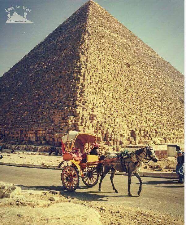 The land of the greatest civilization Egypt 💚 مصر من أعظم الحضارات في تاريخ البشرية  #easttowestadventures #egypt #egyptianmuseum #cairo #travelblogger #travelphotography #pyramids #museum #egypt #ancientegypt #hapshepsut #statue #wanderlust #explorethepast #mummies #pharoahs #giza #cairo #thenile #africa #kingdoms