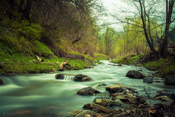A peaceful river in Bucovina by Iulian Safta on 500px