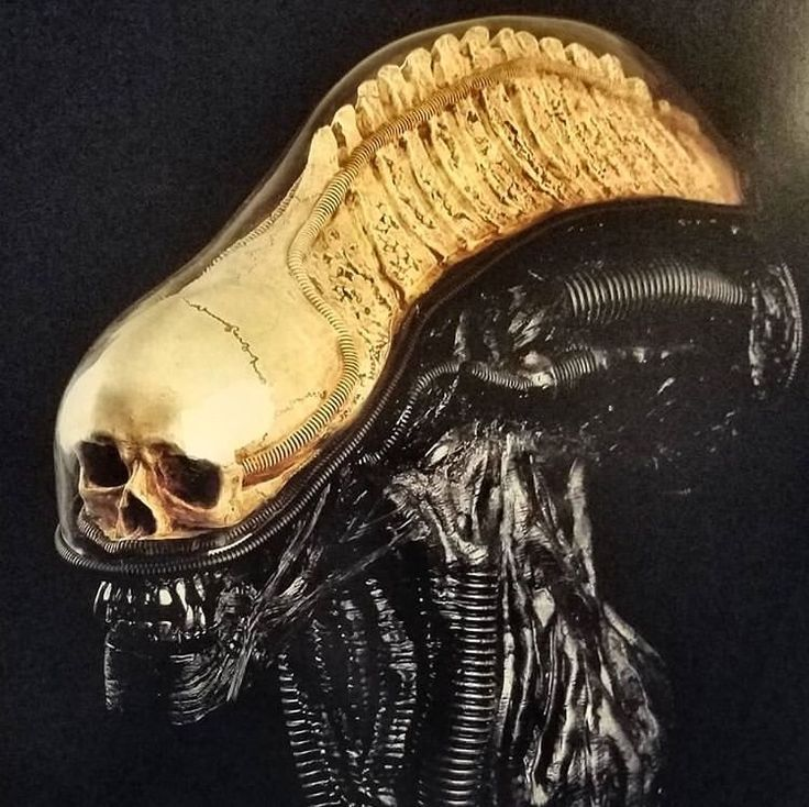 Pin By Julian Stoller On Photos I Like In 2020 Giger Art