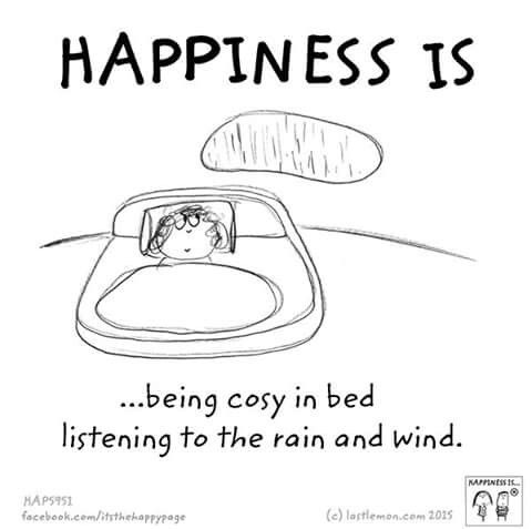Happiness is being cozy in bed listening to the rain and wind.