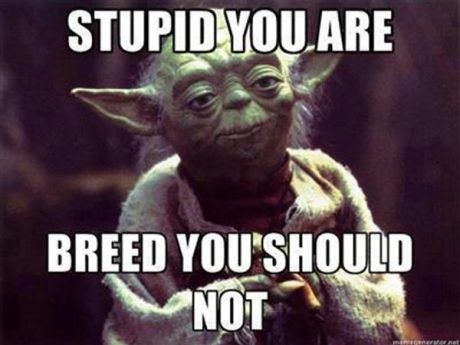Stupid you are. Breed, you should not.  Thought about pinning this to 'Twisted Humor', but naaaah.... Way too much truth in it.
