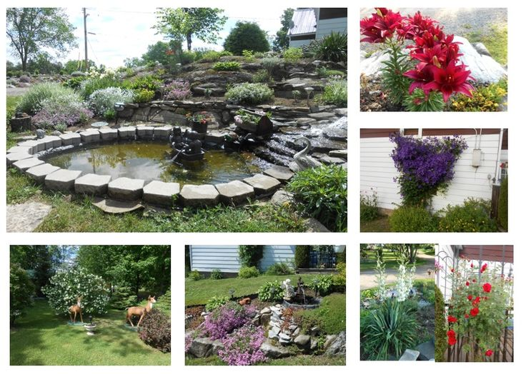 Here's Susan's entry for #ShowUsYourGarden contest. Click here to vote or enter! https://www.facebook.com/TamarackHomes