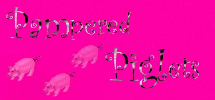 Teacup Piglets| Teacup pigs | Micro pigs| Mini Pigs for sale| teacup pigs for sale | Tea Cup Pigs