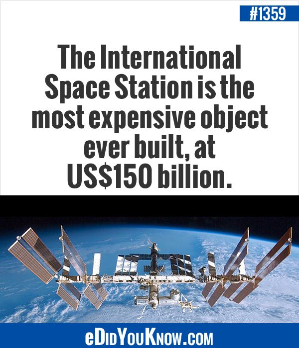 1777 best images about facts on pinterest facts world for When was the international space station built