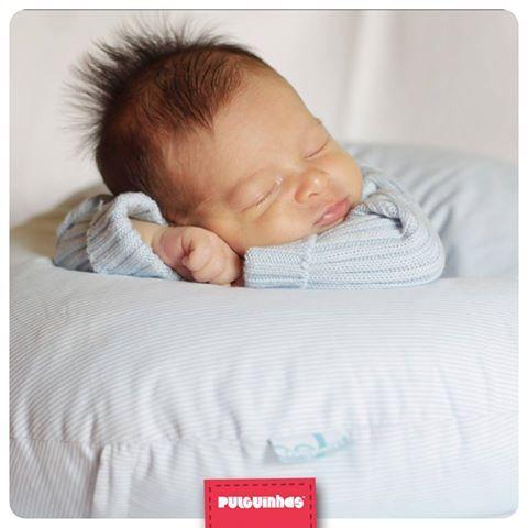 Às vezes é difícil acreditar o quão pequenas e delicadas são as Pulguinhas ao nascer… Basta um olhar e fazem despertar um instinto protetor cheio de carinho. Verdade? :) <3