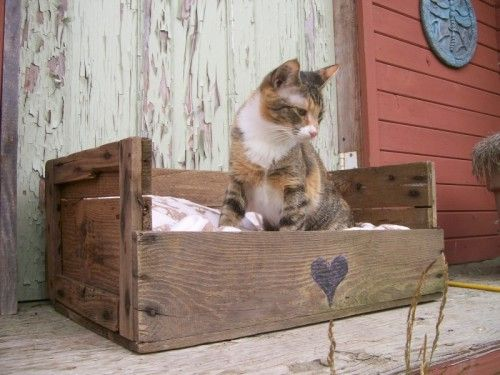 DIY cat bed from an old fruit crate