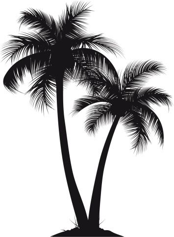 Vectores libres de derechos: palm trees