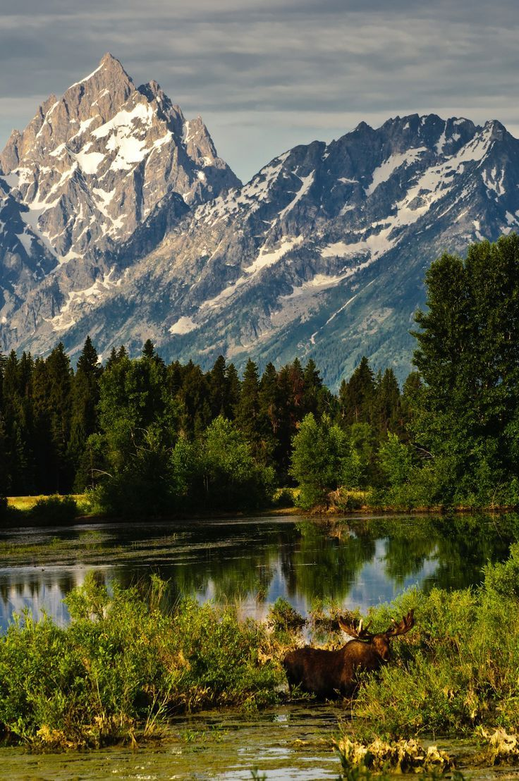 Best Images About US  Canada National Parks On Pinterest - Us and canada national parks map