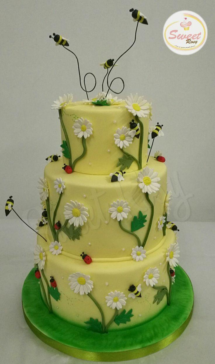 Cake spring