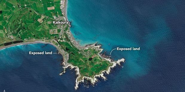 New land off the Kaikoura coast raised out of the ocean by last month's 7.8 magnitude earthquake has been documented from space. Photo / NASA Earth Observatory