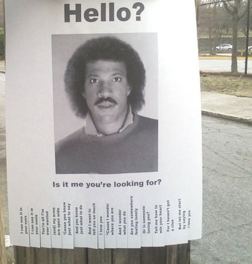 Hello? Is it me you're looking for? // funny pictures - funny photos - funny images - funny pics - funny quotes - #lol #humor #funnypictures