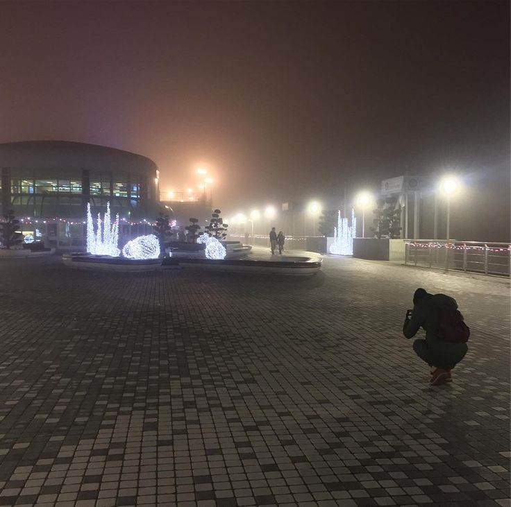 Stanka getting the absolute best possible photo of Canadian fog.