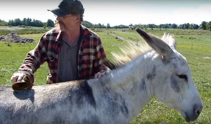 After years of raising animals for slaughter, this rancher decided to convert…