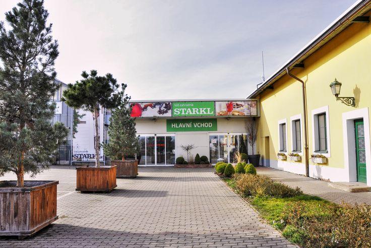 OTEVÍRÁME 26.2.2016 Vážení zákazníci,  od 26.2.2016 opět, po zimní přestávce, otevíráme Zahradní centrum v Čáslavi.  Otevírací doba do 29.2.2016: Po-So 8:30-17:00hod., Ne 10:00-17:00hod.  Otevírací doba od 1.3.2016: Po-So 8:30-18:00hod, Ne 10-18:00hod. Bude z čeho vybírat, přijďte, těšíme se na Vás. Kolektiv fy STARKL zahradník