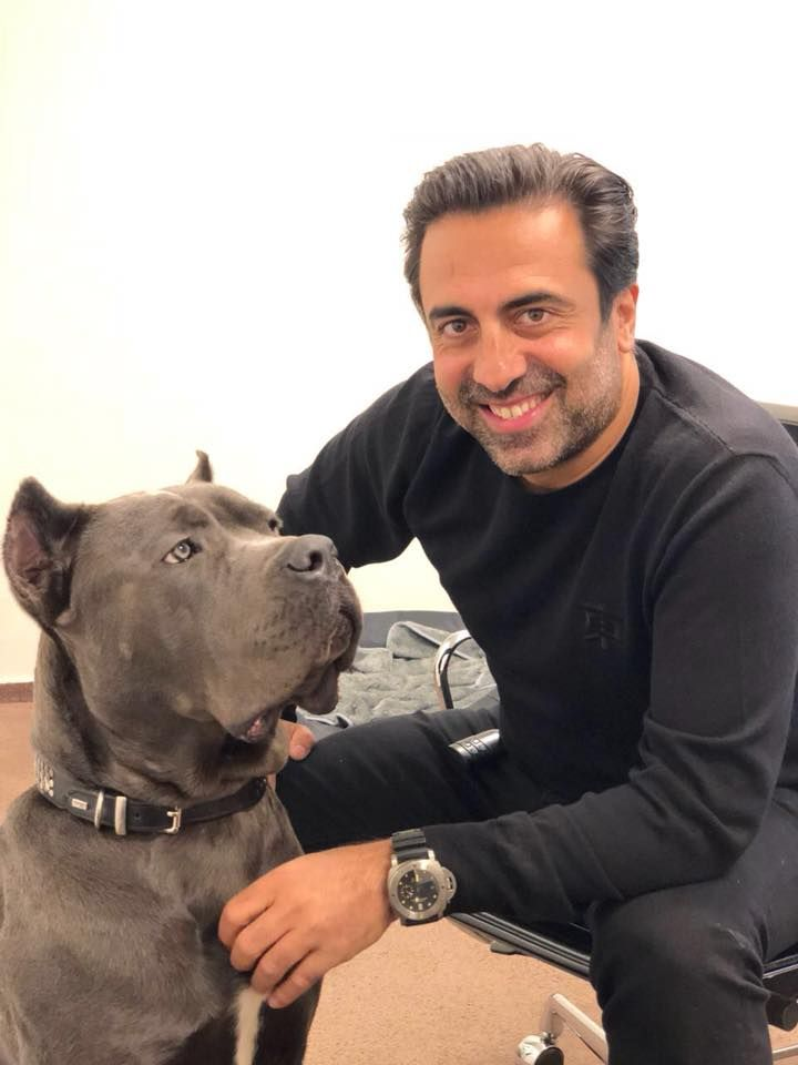 Lax Blue Canecorso With His Fanatic New Family In Germany Love Seeing Our Dogs Doing Well Pdw Family Protection Dogs Dogs For Sale Uk Cane Corso