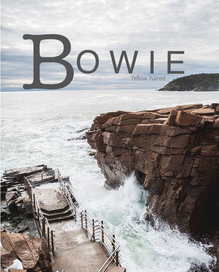 Bowie, B baby names, baby names, boho baby names, rustic baby names, male baby names, middle boy names, short first names, unique boy names, Names that start with B, uncommon baby names