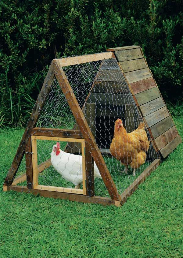 Build An A Frame Chicken House