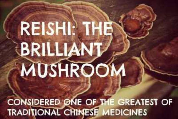 High pressure medicine herbal blood