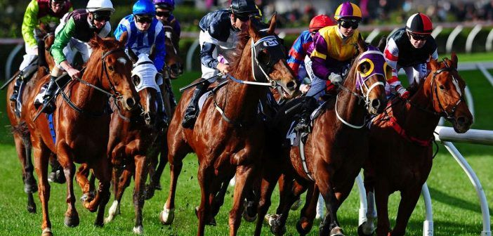 NAP Of The Day Horse Racing Tips – 29/06
