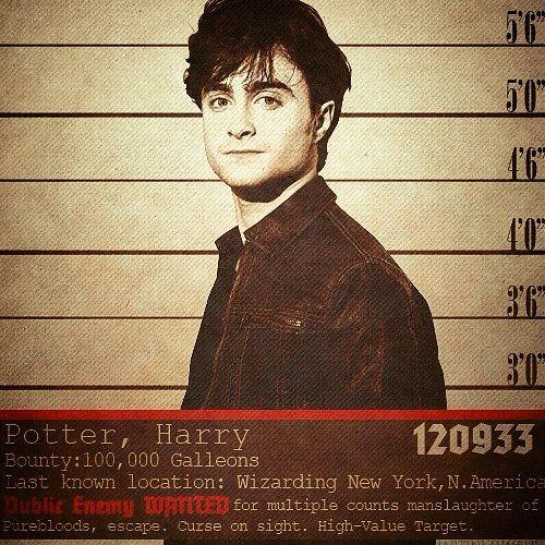 Peki Ya Voldemort Kazansaydı? [Harry Potter, WANTED!]