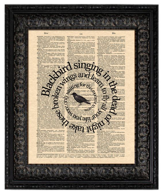 The Beatles Blackbird song lyrics set in spiral and printed on a reproduction of the blackbird page from a vintage Webster dictionary. Wonderful