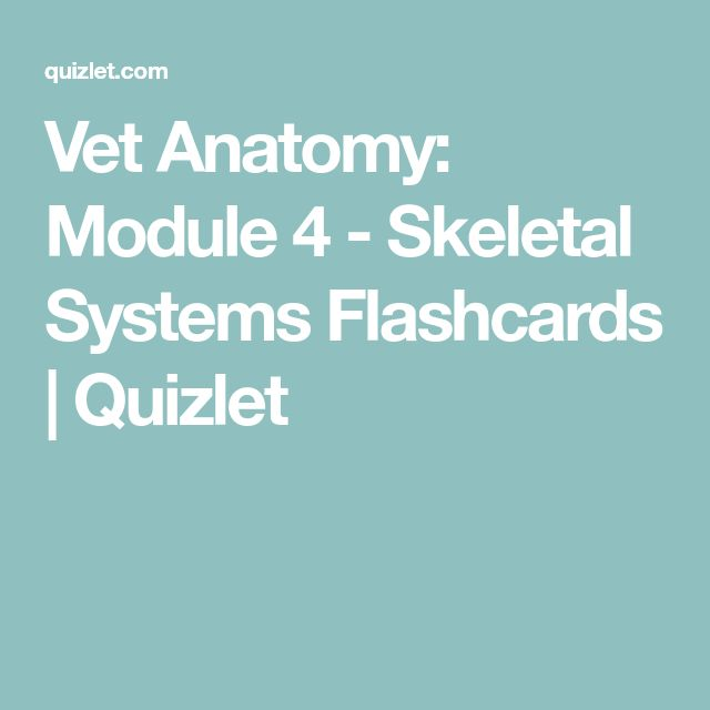 Learn These Skeletal System Vocab Quizlet {Swypeout}