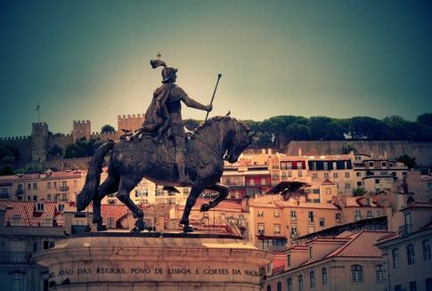 Portuguese horses