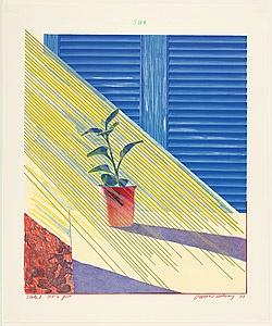 "David Hockney ""Sun"""