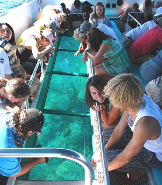 Great Barrier Reef packages from Brisbane ~ Australian Sunset Safaris